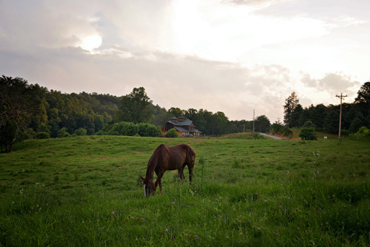 Appalachian-Trail-Rides-At-S&T-Stables